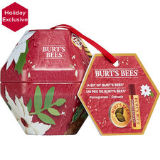 Bit of Burt's Bees Pomegranate Holiday Gift Set