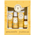 show Burt's Bees Baby Getting Started Kit