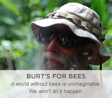 Burt's For Bees