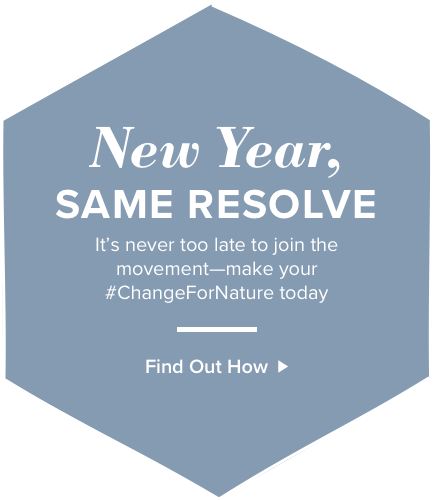 New Year, same resolve. It's never too late to join the movement- make your #ChangeForNature today. Find out how.