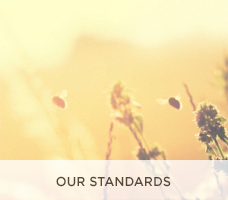 Our Standards