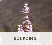 Sourcing