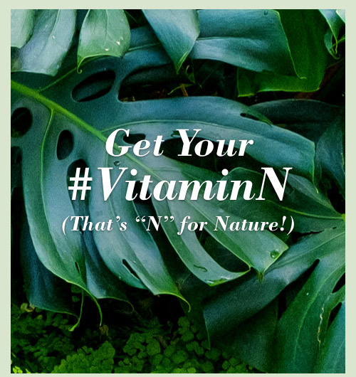 Get your @VitaminN. (That's N for Nature.)